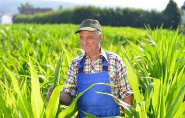 Çiftçilere Borç Yapılandırma Erteleme Şartları
