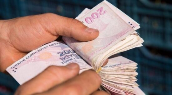 Esnaf 1.000 TL Yardım Parası (E-Devlet) Başvurusu