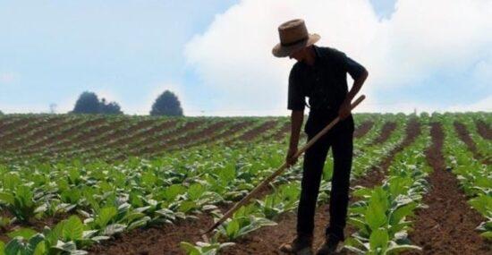 Genç Çiftçi Başvuru Kaydı Nasıl Yapılır? 2021 (Başvuru Dilekçesi)